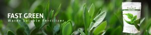 Fast Green fertilizer banner