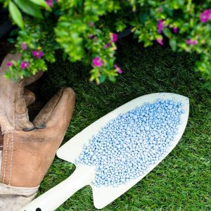 Granular Fertilizers for Plants and Lawn